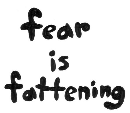 FEAR IS FATTENING by Bethann Shannon